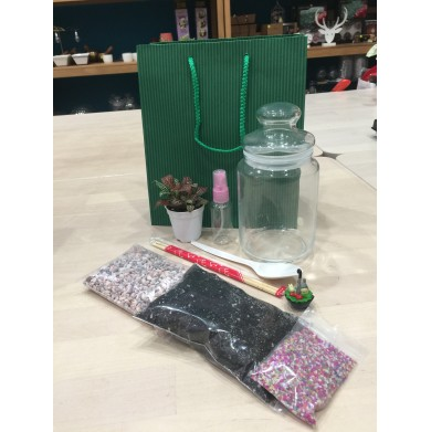Basic Terrarium DIY Kit